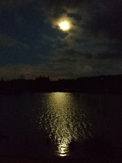 moonsplash